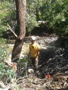 Arborist Hals, sizing up the damage on Boulder Creek.
