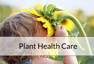 br-plant-health