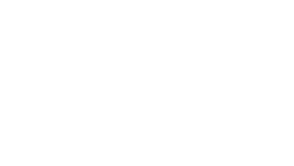 blue_river_forestry_logo_white_huge