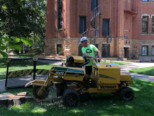 Boulder, CO Stump Grinding Services