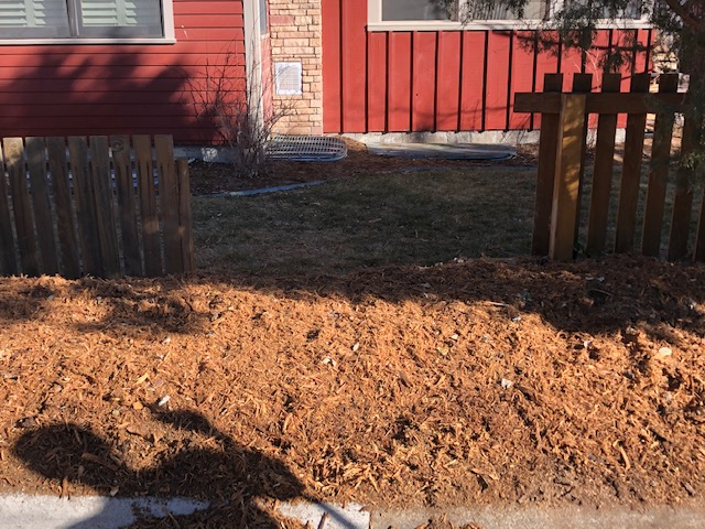 After Stump Removal Services