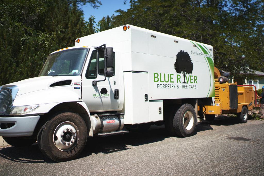 Erie, Colorado Tree Removal Services