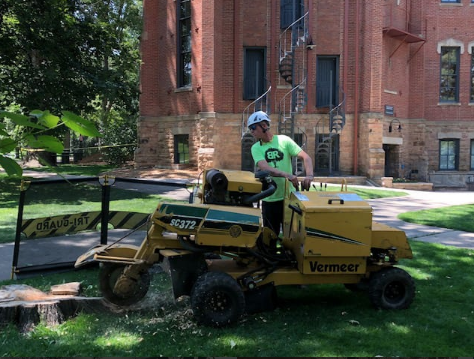 Longmont, Colorado Stump Removal During Grinding