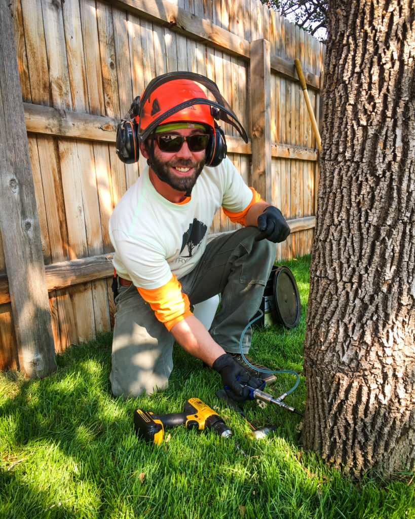 boulder-colorado-tree-service